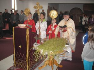 ssl-vrbica-2013-01